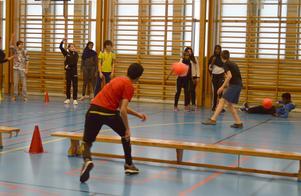 Spökboll ska spelas i Kvarnängshallen.
