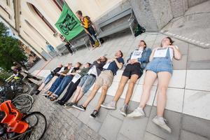 Med bilder på döda djurarter lade sig aktivister från  Extinction Rebellion framför Rådhuset.