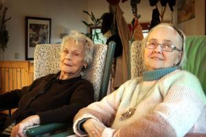 Elly Flink och Iris Lindberg sitter gärna framför den öppna spisen och ser på tv.