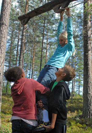 Barnprogram. Aimée Wallin, Emma Kjellander och Hugo Selse samarbetar i skogen. Alla deltar i barn-programmet Wild Kids.