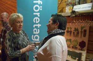 – Det är roligt att träffas och det här är bra för att kunna bilda nya nätverk, säger Anita Thuresson, som pratar med Företagarna Härjedalens styrelseledamot Carina Subäck.