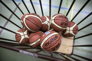 Falu basket har gjort ett rejält uppsving på några år.