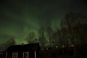 Dessa bilder är tagna i Vika Strand, Falun.