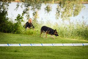 Polisen har hundpatruller på plats under måndagskvällen för att för att försöka säkra bevisning.