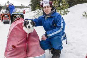 Andreas Erikssons hund åker i egen pulka.