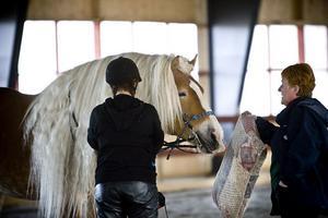 Kudde eller fara? Ulla-Carin Carlsson-Lindkvist lärde ryttarna att träna hästarna i att kuddar, plastband och annat inte är något att bry sig om.