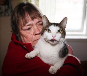 – Lär inte föräldrarna sina barn att de ska visa respekt mot både djur och människor?Maj-Britt Sjögren är mycket upprörd sedan hennes katt plågades under sista april.