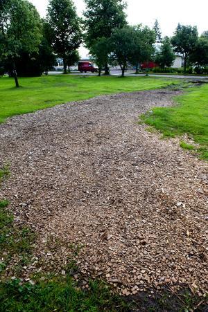 Delar av gräsmattan är täckt av barkflis och delar är helt lerig eller ligger under vatten.