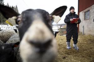 Länsstyrelsen Djurskyddskontroll Joakim Önnemar