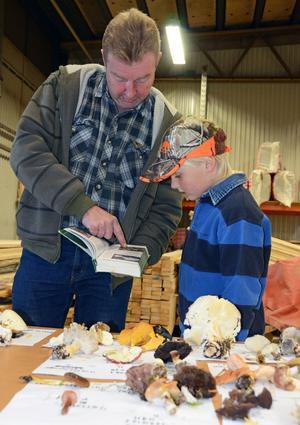 Johan B Lisra berättar om ätliga svampar. Unge Måns Jernberg är intresserad.