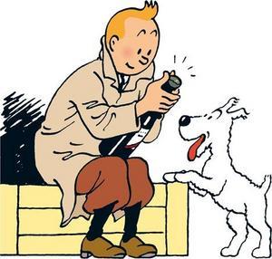 Tintin fyller 80 år i år. En rätt pigg 80-taggare, får man väl tillägga.