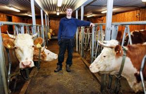 Magnus Olsson är en ung bonde i Jormvattnet med köttdjur, får och skog. Han kompletterar med jobb som snickare, skoterguide och sandare för att få lite mer inkomster, men även för att han tycker att det är roligt att göra annat. Här inne i ladugården bland korna som är en blandning av Hereford och Simmental.