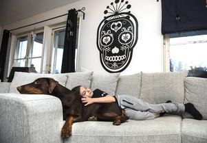 Romeo slappar i soffan med dobbermantiken Kayla.