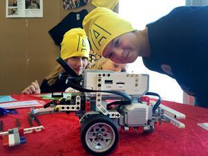 Söråkerslaget Southfield animals deltog i robottävlingen First lego league. Nora Ljusberg och Lucas Norberg var två av medlemmarna i laget.