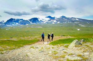 Ökad turism inom Vålådalens naturreservat stör rennäringen. Frågan om en nationalpark har splittrat Handölsdalens sameby. Nu läggs planerna ner.