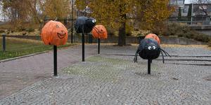 På Stora gatan i Köping har det pyntats med spindlar och pumpor-