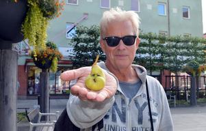 Lasse Björnhagers första reaktion när han såg päronet på grenen var att brista ut i skratt.
