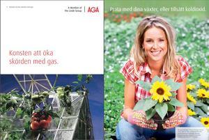 Företaget AGA säljer koldioxid, som växthusägare kan använda för att förbättra sina skördar. Bild: AGA:s hemsida