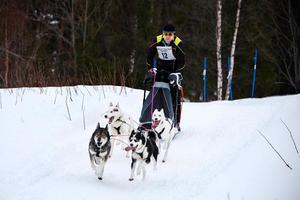Bilden är tagen vid en slädhundstävling i Norråker år 2014.Foto: Emma Dahlquist
