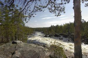 Terrängen närmast vattnet vid Hylströmmen består av stenhällar.