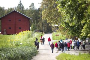 Omkring 1700 personer besökte skördefesten på Wij trädgårdar, som bland annat erbjöd ponnyridning och självplock av grönsaker.