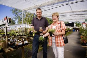 Jan och Karin Strid har köpt växter till sitt nyanlagda stenparti.