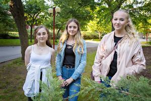 Linnéa Andersson Wisten, Lovisa Malmström och Alva Tegnér var på Stolt och nykter för första gången.