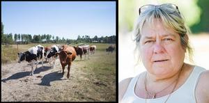 Lotta Zetterlund, ombudsman i LRF och ledamot i styrelsen för Gefleortens mejeri, tycker att det är tråkigt men nödvändigt att mejeriet lägger ner. – Det känns tungt. Personalen har gjort ett fantastiskt jobb i en orationell miljö.