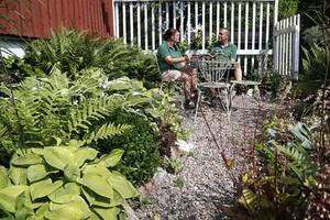 Jennifer och Per-Ivar Gustafsson sitter i sin favorithörna, frukostplatsen. Här är det gröna växter som gäller och i synnerhet funkior som de också samlar på.