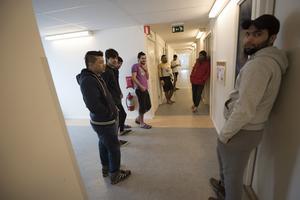 Det svenska samhället måste göra mer för att integrera de många flyktingar som har kommit till Sverige på senare år, menar kommunstyrelsens ordförande Harry Bouveng (M). Foto: Fredrik Sandberg/TT
