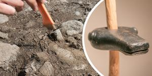 Den 4 000 år gamla stenklubban i form av ett björnhuvud hittades i Stora Vika på 1960-talet.