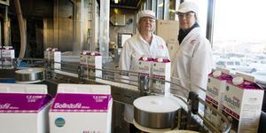 Elisabeth Jäderberg och Margareta Pettersson har jobbat hela sina yrkesliv på Gefleortens mejeri och är även fackligt aktiva. Nu på tisdag inleds nedläggningsförhandlingen med Arla.
