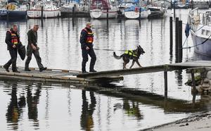 Det krävs att hunden är uthållig, har arbetskapacitet, använder nosen och inte är rädd för nya miljöer, säger hundföraren Hans Norberg.