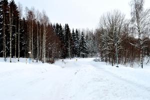 I skogsdungen till vänster bredvid pulkabacken och med utsikt över Ljustern vill bolaget bygga bostadsrätter.