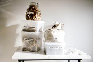 Shalony van Stralendorff älskar att plocka svamp – och att förädla den.