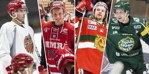Hockeyallsvenskan är i förändring, enligt uppgifter i media.
