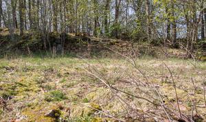 Staket är inköpt för att ringa in en hundrastgård. Irene Wickman säger att här får hundar naturlig skogsmark med stenar och terräng att springa på.