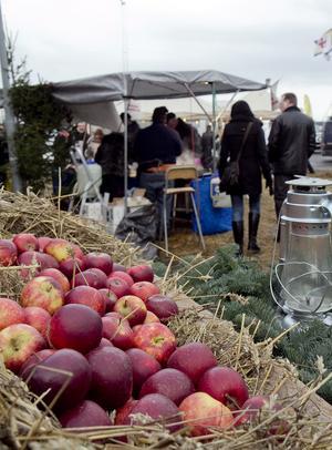 Julmarknad i Nynäshamns fiskehamn blir det den 7-8 december. Foto: Kristina Laitinen