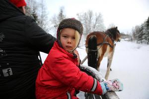 Elsie sex år åkte med i kålryssasn, som Anna-Karin Bennberg körde och hästen Bella drog.