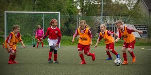 På bilden syns Milou, målvakten Ida, en Norbergsspelare, Niki, Agnes och Ebba  från Västanfors IF.