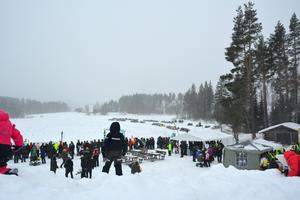 Att hitta en bra plats för att se loppen var inte lätt i folkmängden. Men barnen var smarta, och klättrade upp på ställets största snöhög för bäst utsikt över dagens skeenden.