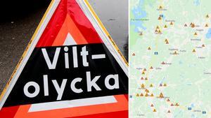 På flera vägar i Sala och Heby har många viltolyckor skett under året.Foto: ArkivKarta: NVR