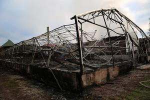 Ett av de förstörda växthusen.