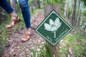 Skyltar i naturreservatet Djupbäcka föra att skydda de fåtal mosippor som finns där.