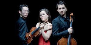 Amatis pianotrio: Mengjie Han, piano, Lea Hausmann, violin och Samuel Shepard, cello. Foto: Allard Willemse