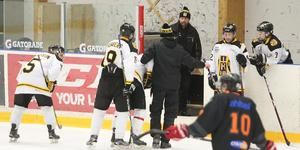 Daniel Pettersson var riktigt groggy när han lämnade isen efter en smäll mot huvudet.