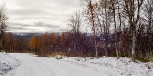 Mittåkläppsvägen är ett populärt skidspår på vintrarna. Den officiella premiären i Bruksvallarna ligger flera veckor bort men redan nu går det att åka skidor längs vägen, som bjuder på fina vyer.