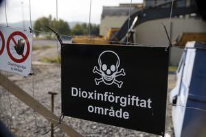 Från livsfarligt till grillplats – Marieberggsområdet återinvigs på söndag efter dioxinsaneringen.