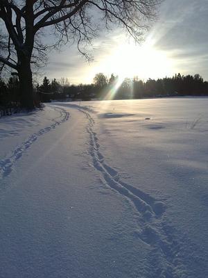 Vinterväg på landet.