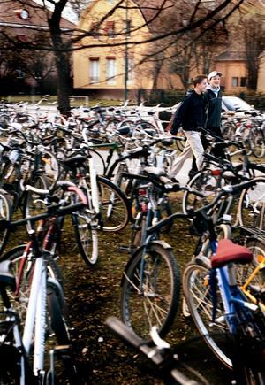 Cyklar, Stortorget, Örebro, bilfri dag.